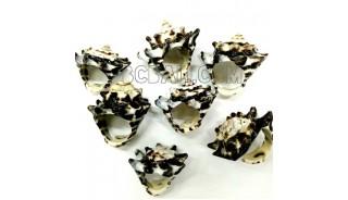 organic shells rings tribe handmade