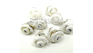tiger shells organic rings ethnic