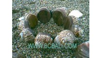 Beach Shell Bracelets