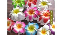 Balinese Tropical Flowers Hair Accessories Clips