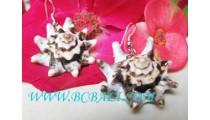 Earrings Shell Nautilus Organic