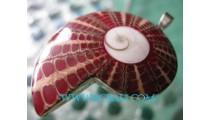 Shiva Eye Shell  Silver Pendant